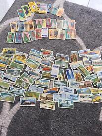 Assortment cards