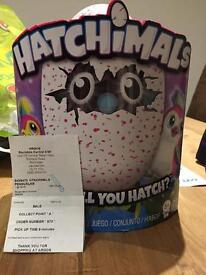 Hatchimals - Pink
