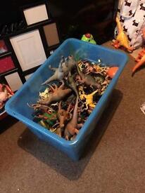 Huge box of dinosaurs