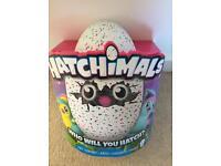 Hatchimal - BNIB - LAST 1! Collect today!