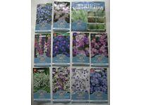 BLUE / Cool Pastel Colour Flowers Seeds £25+ value BRISTOL