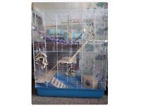 Large rat or degu cage