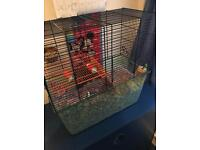 Free to good home 2x male gerbils and cage