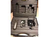 Red5 Audio RV6 Condenser microphone
