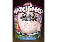 Brand new hatchimal pink egg