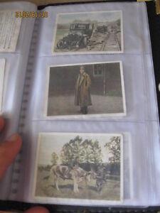 Cartes de la collection ''Der weltkrieg'' à vendre ou à échanger Saint-Hyacinthe Québec image 8