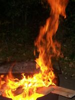 Backyard fires and campground cooking? Need firewood?