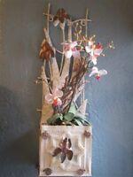 Orchidées décoratives pouvant s'accrocher au mur