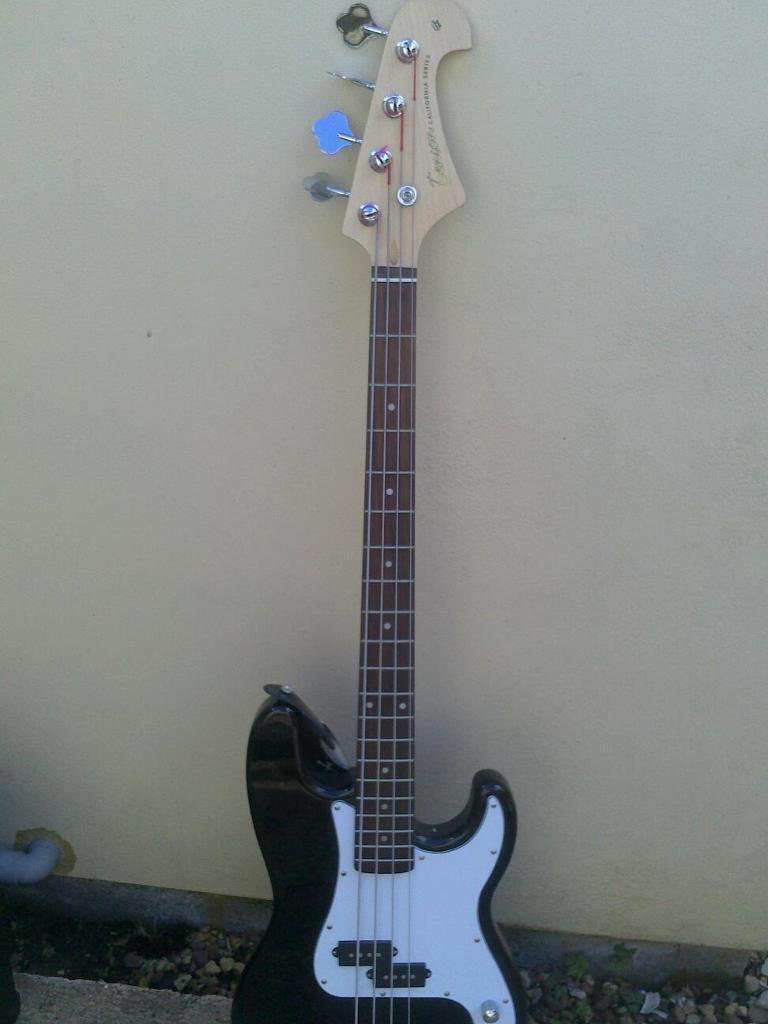 Tenson Guitars Bass Series Bass Guitar