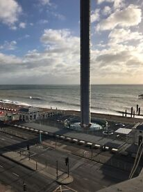 Beautiful large double room available in central Brighton,perfect view of the SEA