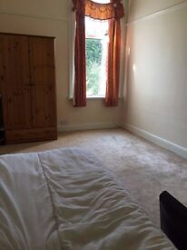 An affordable room available in a large house