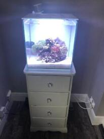 Small marine tank with heater, skimmer and air pump
