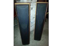 mission speakers x2