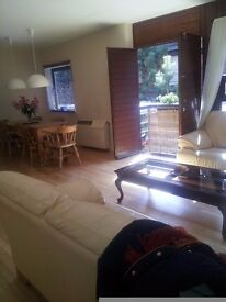 Duke Street L1, spacious bright apartment