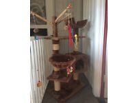 Kitten/cat tower. Has various hanging toys scratch post an places to sleep or play.