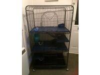 Rat/degu/chinchilla cage