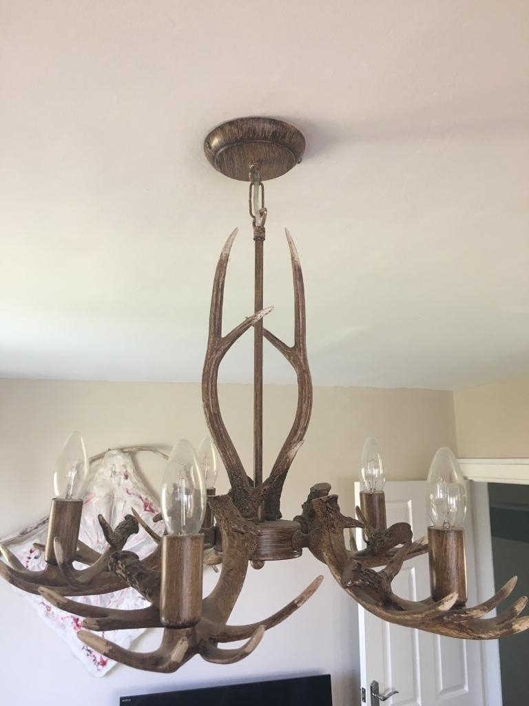 Next antler light fitting chandelier in redditch worcestershire next antler light fitting chandelier audiocablefo light catalogue