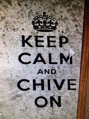 Наклейки и рисунки the Chive *Authentic*