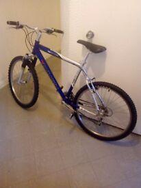 Saracen mountain bike.