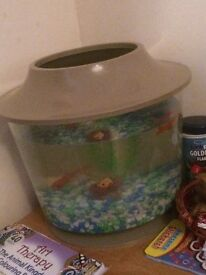 LARGE FISH BOWL AND 1 FISH! can lower price by couple of pounds