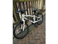 "FROG bike 55 ""SPOTTY"""