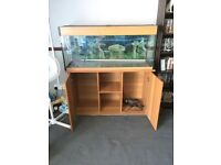 3 ft fish tank and cabinet