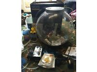 Biorb Fish Tank 30 Litres Capacity with loads of accessories