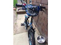 Boys 14in bike