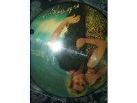 ROD STEWART PICTURE DISC LP RECORD VINYL