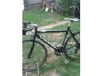 Viking san Marino XRR road bike