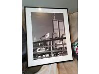 Seagull black and white photo frame