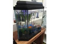 Octagonal fish tank for sale.