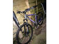 Viper adults mountain bike