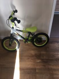 Boys green dinosaur bike
