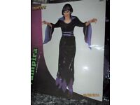 VAMPIRE LADY BLACK AND PURPLE FANCY DRESS OUTFIT 10/12 GREAT FOR A HALLOWEEN PARTY