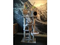 Cat Climbing Tower from Pets at home (£150 new). £30 now.