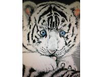 Hand painted original art of Tigers. Both painted in acrylics and framed.