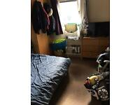 Double furnitured room to rent £205 pcm