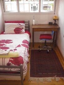 Beautiful, Cozy Single Room in Roehmapton