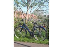 Raleigh Pioneer 1 Ladies Aluminium Hybrid Woman Bike