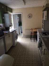 Lead Tenant sought for quiet house in Splott. £275 PCM ALL INC.