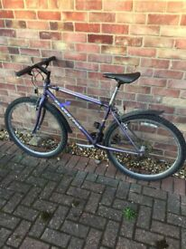 Bicycle - Gents Mountain Bike - £1