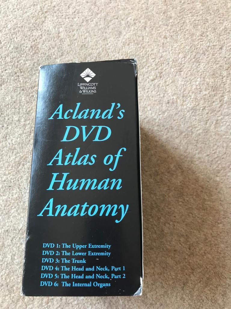 Wunderbar Anatomy And Physiology Dvd Fotos - Menschliche Anatomie ...