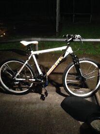 Coyote Minnesota mountain bike