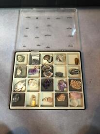Crystal and Fossil Collection
