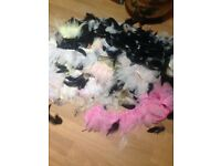 Free coloured feathers. Crafts, fly fishing, teacher supplies
