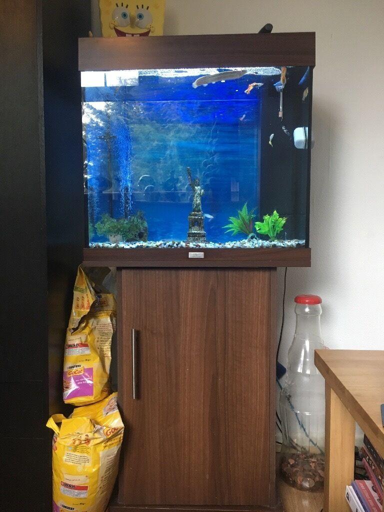 Juwel 120l aquarium full fish tank setup in norwich for Aquarium 120l