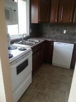 Petrolia - Renovated 2 Bedroom Apartment For Rent