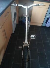 Once bike