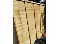 6x5 lsrchlap fence panel new. Treated. Buyer must collect. £20 . Please tect for more details.